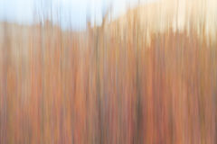 Nature motion blur abstract Stock Images