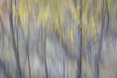 Nature motion blur abstract Stock Photography