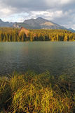 Nature mountain scene with beautiful lake - Strbske pleso, verti Stock Images