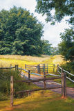 Nature moyenne d'été, Angleterre Images stock