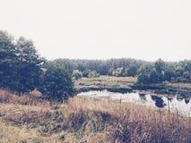 Nature. My beautiful autumn Royalty Free Stock Photos