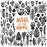 Nature is my Home Lettering quote card with handdrawn floral elements. Vector illustration royalty free illustration