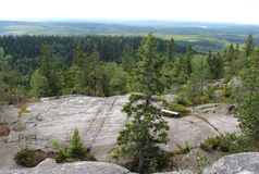 Nature of national park Koli Stock Image