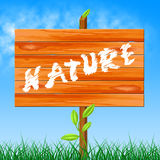 Nature Natural Shows Rural Tree And Trees Royalty Free Stock Image