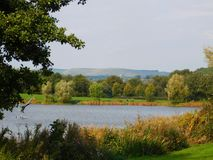 Nature, Nature Reserve, Lake, Wilderness Royalty Free Stock Photo
