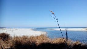 Nature. Sardinia sardegna beach water sea spring stock photos