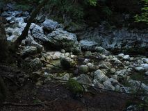 Nature. Stones and wood. River is also there. Somewhere in Slovenia Royalty Free Stock Photography