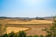 Nature near Barumini. Sardinia,Italy royalty free stock photos
