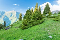 Nature near Big Almaty Lake, Tien Shan Mountains in Almaty, Kazakhstan Stock Photos