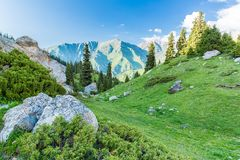 Nature near Big Almaty Lake, Tien Shan Mountains in Almaty, Kazakhstan,Asia Royalty Free Stock Photography
