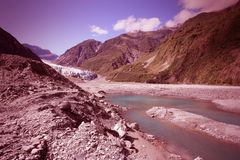Nature in New Zealand Stock Image