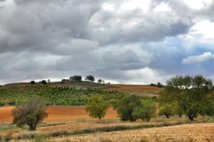 nature normale de montagnes d'horizontal d'Almeria Andalousie cabo de desert gata d'agave près d'Espagnol de centrale de stationn Photo stock