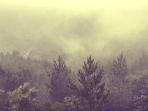 Nature Northern Portugal fields and mountains in fog. Atmospheric Photo Stock Photography