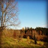 Nature norvégienne Photographie stock