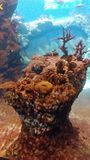 Nature. Ocean nature sea stock photography