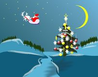 Free Nature Of Christmas Holidey Stock Images - 346444