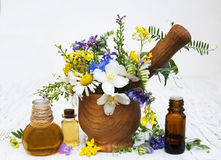 Nature oil with wildflowers Royalty Free Stock Images