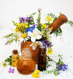 Nature oil with wildflowers Royalty Free Stock Photography