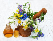 Nature oil with wildflowers Stock Images