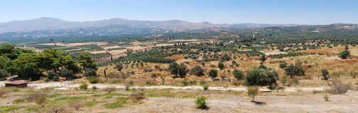 Nature, olive trees, mountains on Crete. This panoramic view can be seen on the way to Minoan archaeological site, Festos, Crete, Greece Royalty Free Stock Photos
