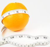 Nature orange with measuring line Royalty Free Stock Image