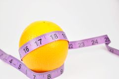 Nature orange with measuring line Stock Images