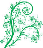 Nature ornament. The abstract vector nature ornament Royalty Free Stock Photos