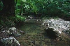 Nature. The nature and panoramas of Abhazia Stock Photos