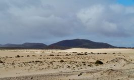 The nature park with the dunes of Correlejo on Fuerteventura Stock Photography