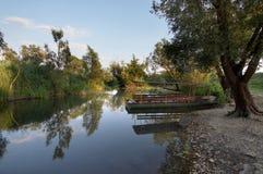 Nature park Hutovo Blato Stock Image