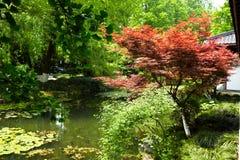 Nature park scenery, Hangzhou Stock Photo