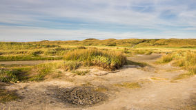 Nature park on wadden island Texel Stock Image