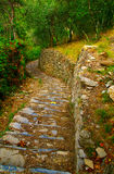 Nature path Royalty Free Stock Image