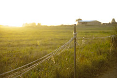 Nature path surrounded by grass and a fence Royalty Free Stock Images