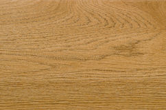 Nature pattern detail of Ash wood background Royalty Free Stock Photography