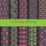 Nature pattern Royalty Free Stock Photo