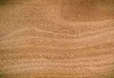 Nature  pattern of teak wood decorative furniture surface Royalty Free Stock Photography