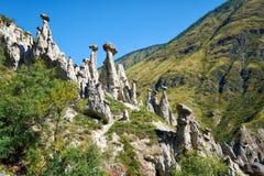 Nature phenomenon Stone Mushrooms in Altai mountains near river. Nature phenomenon and nature miracle Stone Mushrooms rocks in Altai mountains near river stock photo