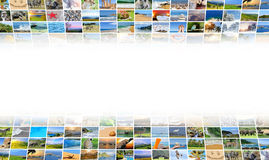 Nature photo (animal, landscape, beach) Royalty Free Stock Photos