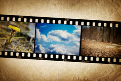 Nature photo with film strip. Royalty Free Stock Image