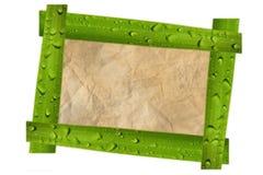 Nature photo frame isolated on white. Photo frame isolated on white Royalty Free Stock Images
