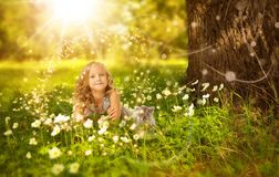 Nature, Photograph, Grass, Spring Stock Images