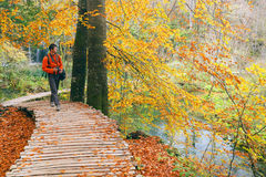 Nature photographer in Plitvice National Park Royalty Free Stock Images