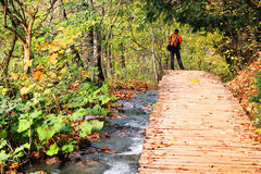 Nature photographer in Plitvice National Park Stock Photography