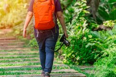 Nature photographer walking with camera gear in the park. To find insect subject and explorer Royalty Free Stock Image