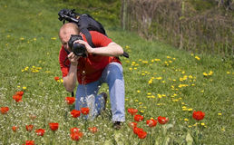 Nature photographer at work Royalty Free Stock Images