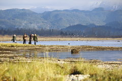 Nature Photographers. Stand on the edge of an estuary observing wildlife Royalty Free Stock Photos