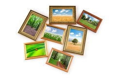 Nature photos in  frames Stock Image