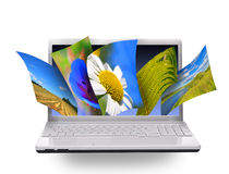 Nature photos on laptop Stock Images