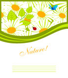 Nature pic Royalty Free Stock Photos